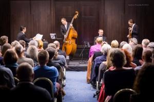 Concert, Solo Tango Orquesta, Grauer Bär-1073