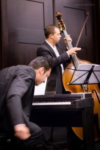 Concert, Solo Tango Orquesta, Grauer Bär-1095