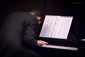 Concert, Solo Tango Orquesta, Grauer Bär-1113