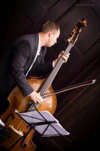 Concert, Solo Tango Orquesta, Grauer Bär-1116