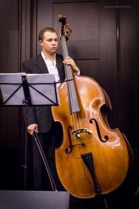Concert, Solo Tango Orquesta, Grauer Bär-1131